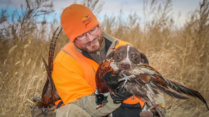 Pheasants Forever's 2017 Pheasant Hunting Forecast Preview Image