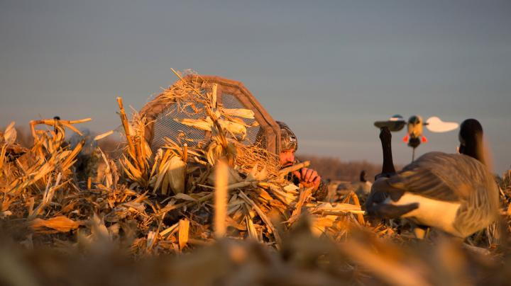 Arctic Push and Subsequent Thaw Create Great Central Flyway Hunting Preview Image