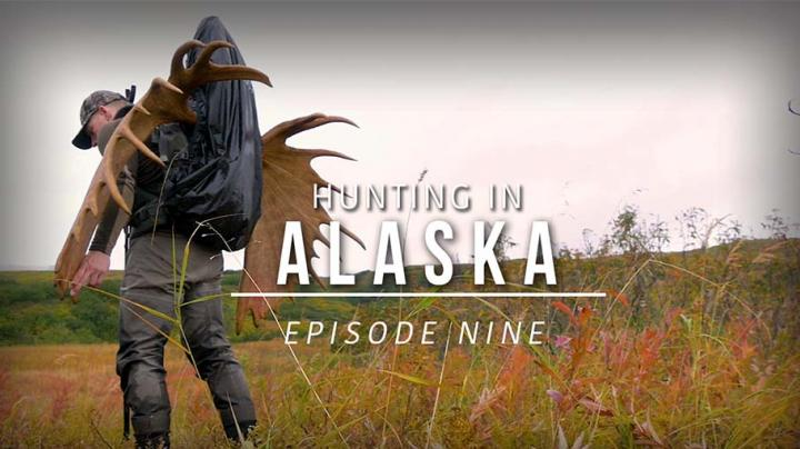 Hunting in Alaska - Episode 9: Epic Moose Pack Out and Twilight Black Bear Hunt Preview Image