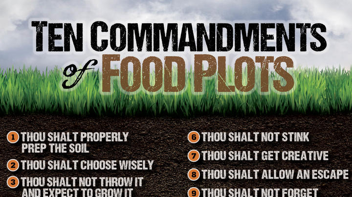 The 10 Commandments of Food Plots Preview Image