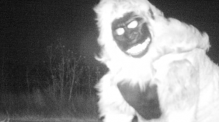 People Dressed as Creatures Prank Cops on Game Cameras Preview Image