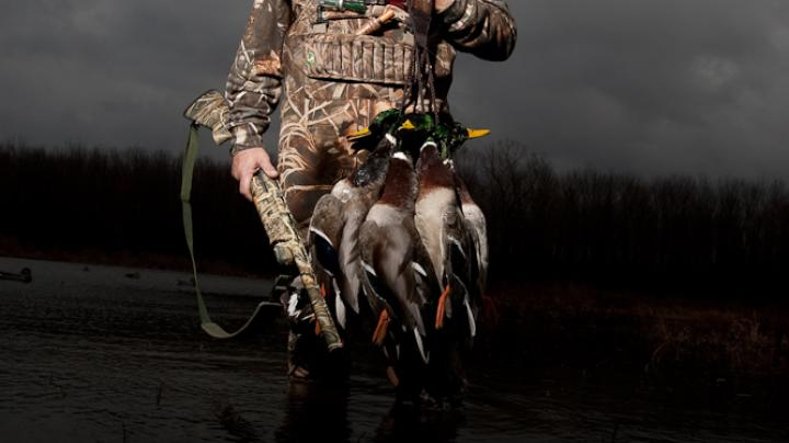 Ready for Waterfowl Season: Part 1 Preview Image
