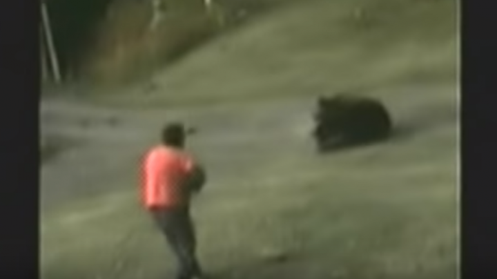 Watch Man Shoot Charging Grizzly and Barely Escape Preview Image