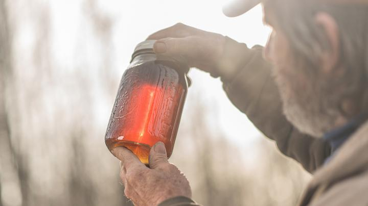 Photo Gallery: How Maple Syrup is Made Preview Image