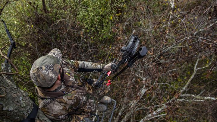 How to Shoot a Bow from a Treestand Preview Image