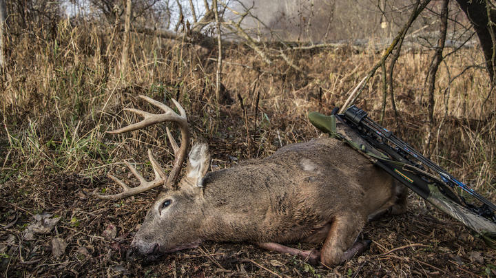 How to Weatherproof Your Bow Preview Image