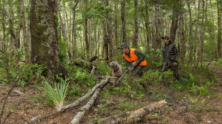 Realtree Partner with Hunter Safety Lab and IRIS who win The Double at the New Zealand Design Industry Awards 2014 Preview Image