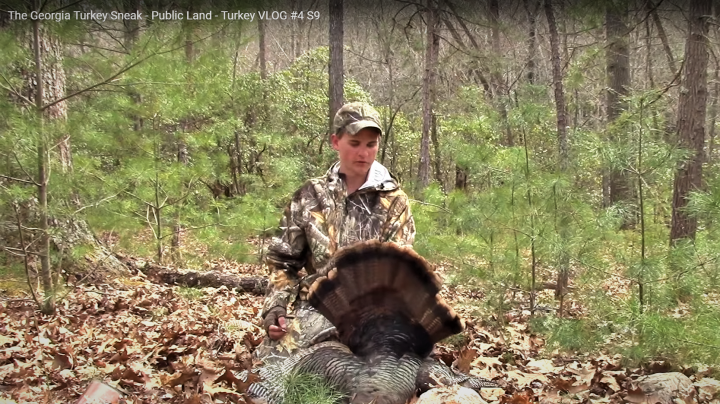 Huntin Grounds Video: Georgia Turkey Hunting Preview Image