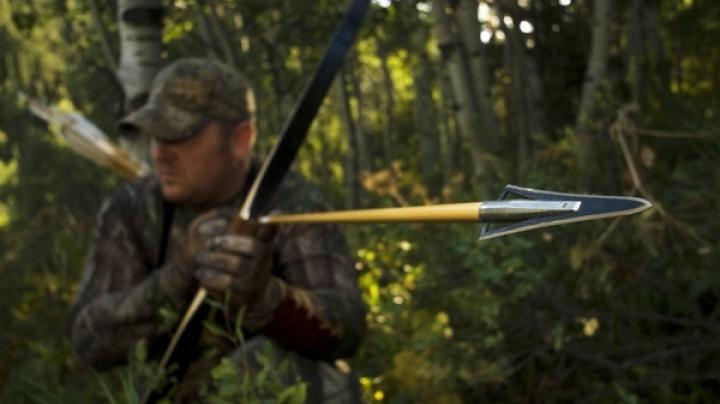 Choosing the Best Broadheads for Specific Game Preview Image