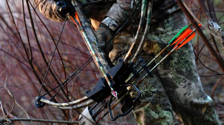 Crossbows in bow season? Preview Image