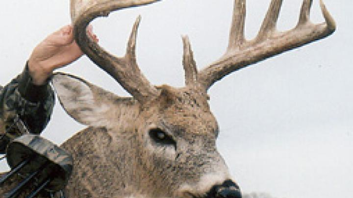 Leftover Non-Res Deer Permits Available in Kansas Preview Image
