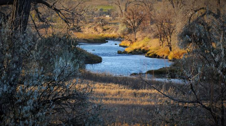 Federal Funding to Boost Wildlife Habitat Preview Image