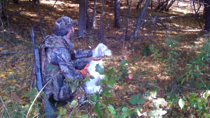 Maine Fall Turkey Opener Preview Image