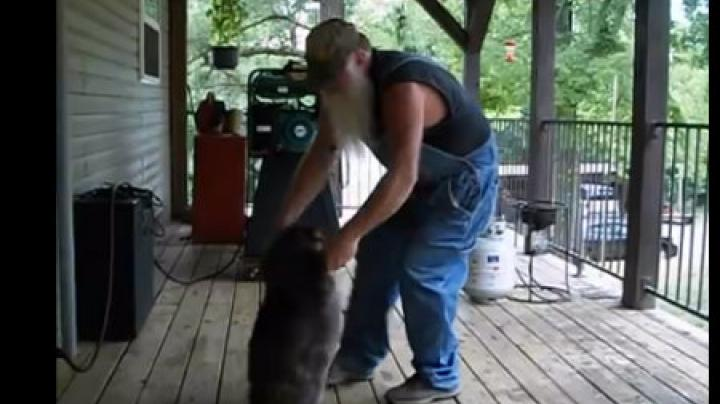 Man Dances with Wild Raccoon Preview Image