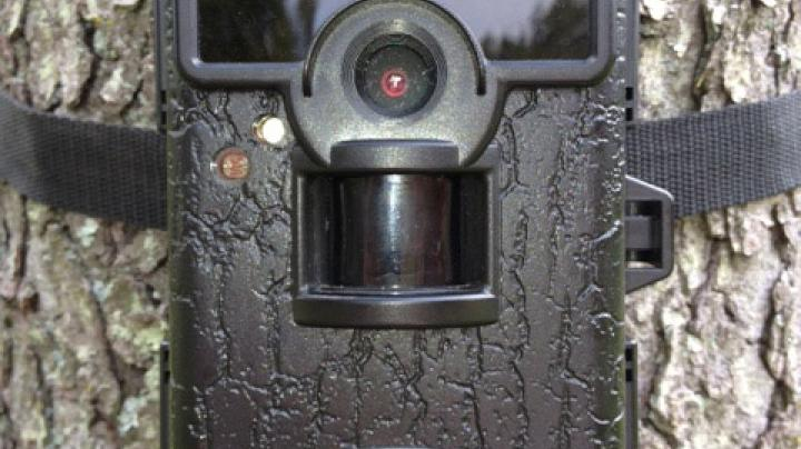 Trail Cam Review: Moultrie M-80 Black  Preview Image