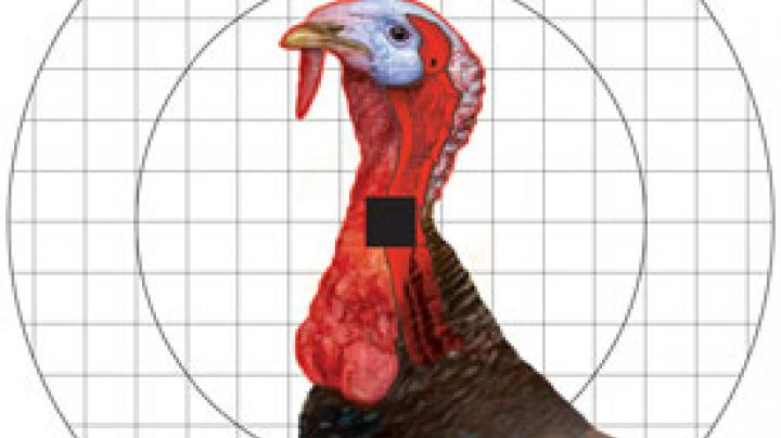 NWTF Convention Coverage Video: New Re-Stick Turkey Sight-In Target from Champion Preview Image
