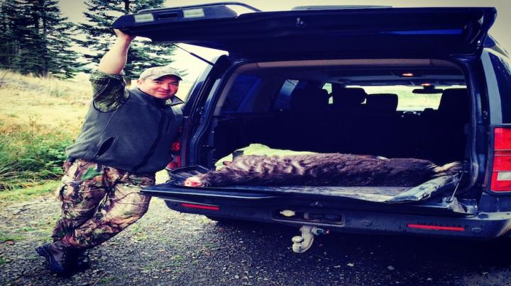 Epic Sika Stalk In Bonnie Scotland Preview Image