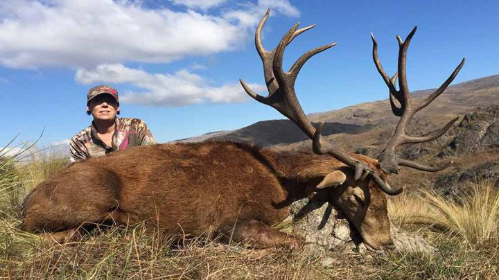Hunting Red Stags in Argentina  Preview Image