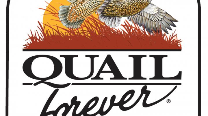 Quail Forever Signs Landmark Agreement with the U.S. Forest Service Preview Image