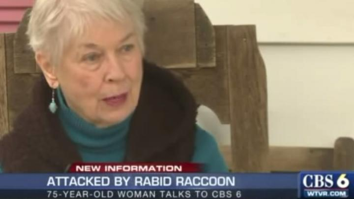 75-Year-Old Woman Chokes Rabid Raccoon to Death Preview Image