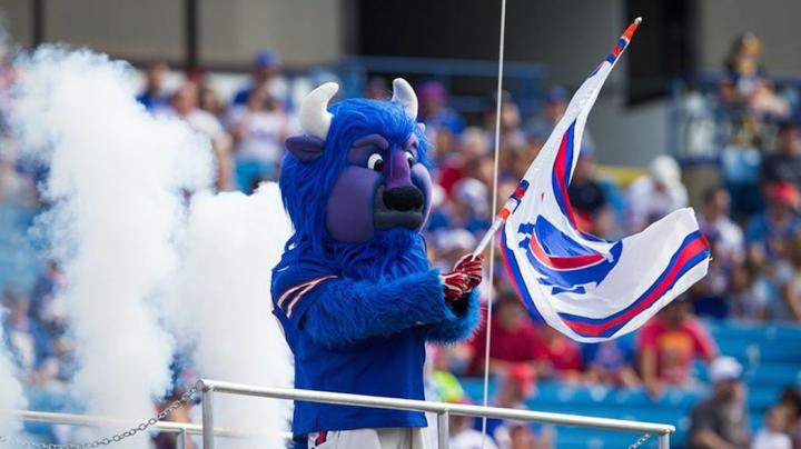 The Best Big Game Mascots in Sports Preview Image
