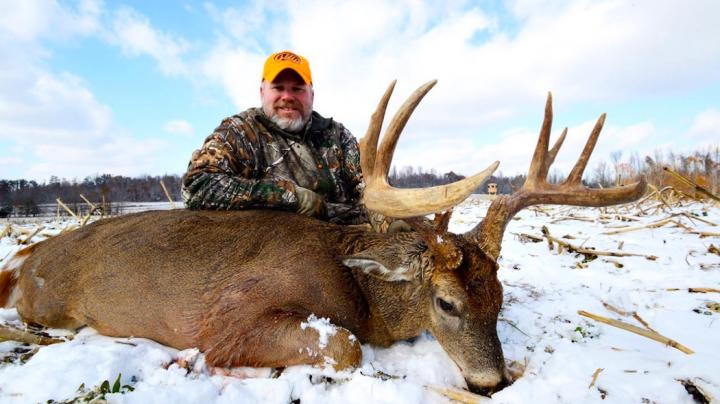 10 Questions You Should Ask Before Buying Hunting Land Preview Image