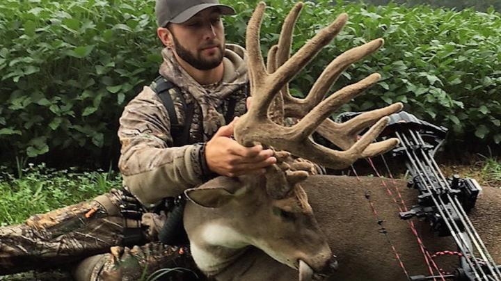 A Huge Early Season Velvet Buck with a Bow Preview Image