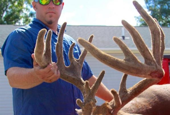 Bowhunter Kicks Off Archery Season with 200-Inch Velvet Buck Preview Image