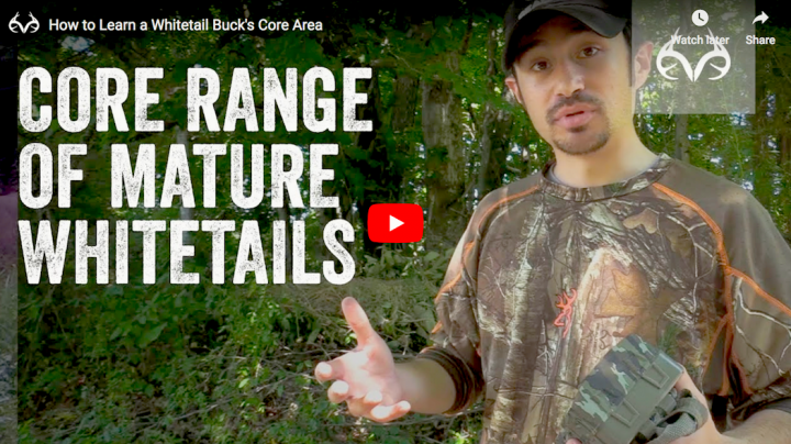 How to Learn a Whitetail Buck's Core Area Preview Image