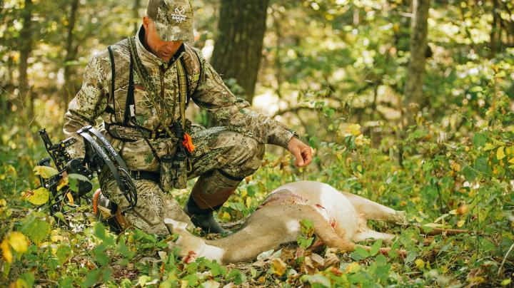 7 Questions You Should Ask About Doe Management Preview Image