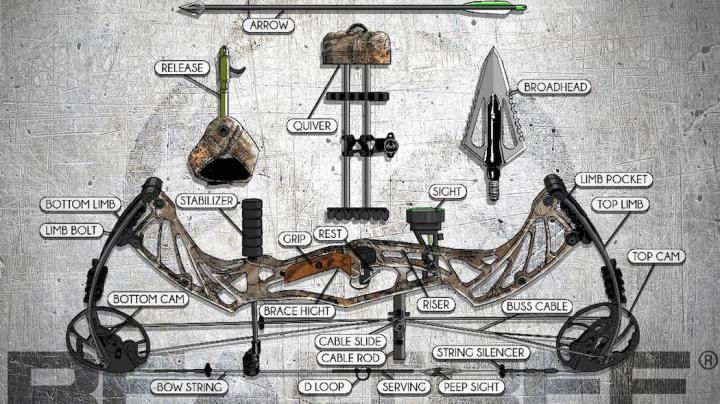 Compound Archery: The Parts of the Compound Bow Preview Image
