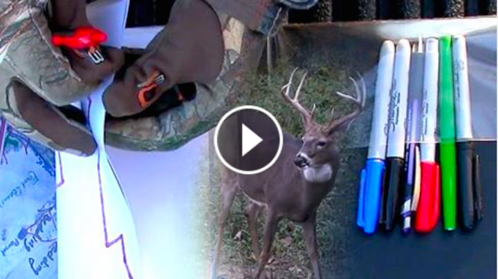 Deer Hunting: The Best Post-Season Scouting Tip Preview Image