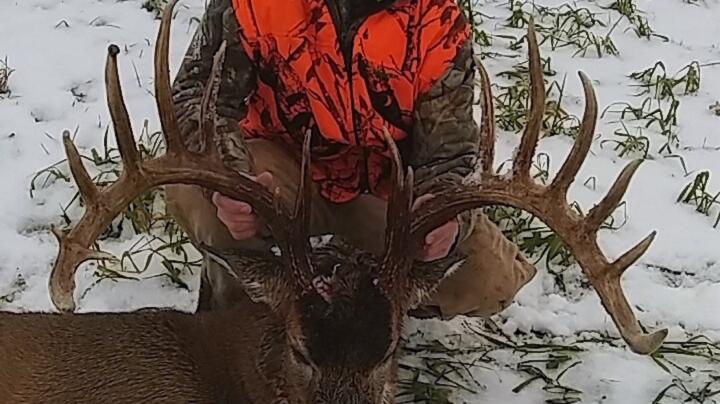 Booner Buck: Deer Drive Produces Possible New State Record Preview Image