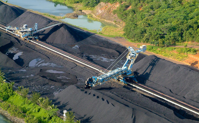 Why Reclaimed Coal Mines Make the Ultimate Deer Habitat Preview Image