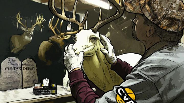 10 Commandments of Taxidermy When Prepping Deer for the Taxidermist Preview Image