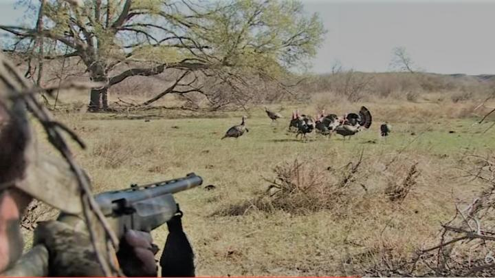 Realtree 2017 Texas Turkey Hunting Video with Nate Hosie, Justin Martin and Friends Preview Image