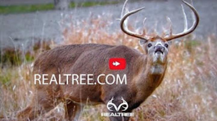 Realtree.com Is Your Source for Deer Hunting Tips and Tactics Preview Image