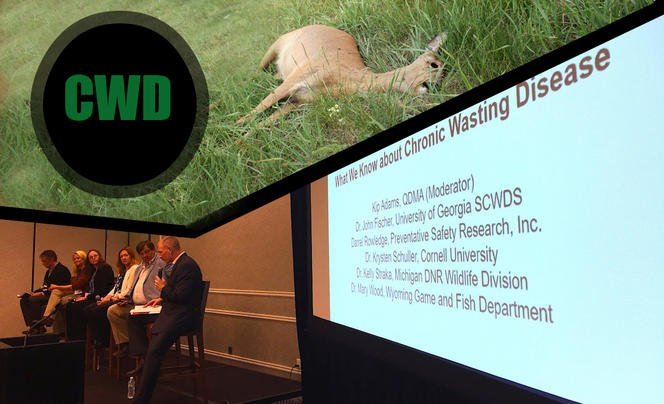 2017 North American Deer Summit: CWD Is Worse Than We Thought Preview Image