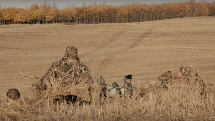 The X: Duck Hunting In Alberta Preview Image