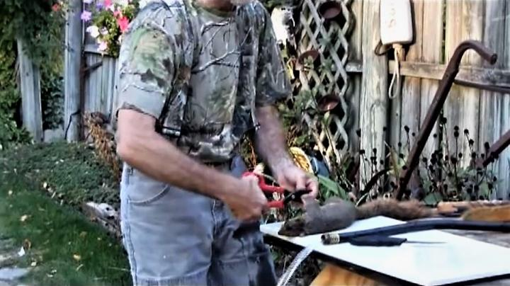 Realtree Video on How to Clean Squirrels Preview Image
