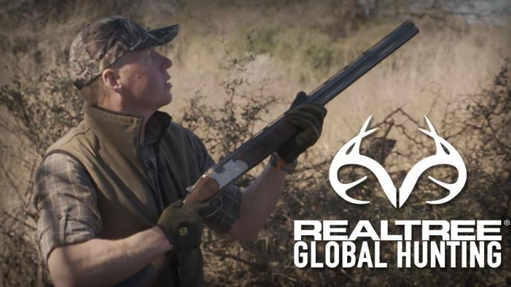Dove Shooting in Argentina with Ian Harford Preview Image