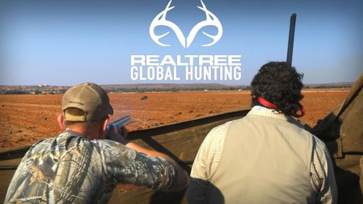 Pigeon Shooting in South Africa Preview Image