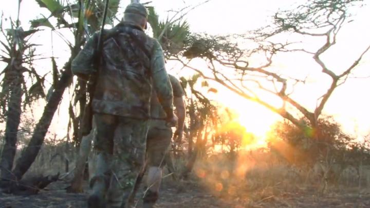Anti Poaching In Mozambique Preview Image