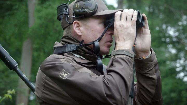 Roebuck Stalking in Hampshire Preview Image