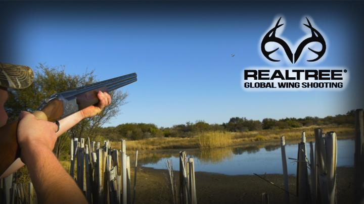 Duck Shooting in South Africa With Matt Cole  Preview Image