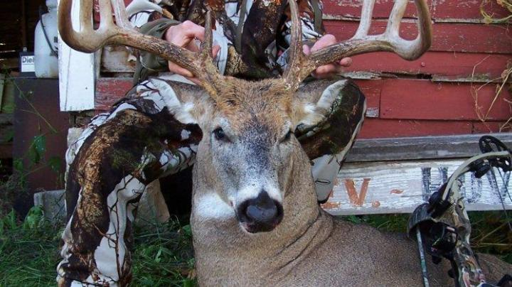 Rack Report: The YouTube Buck Preview Image