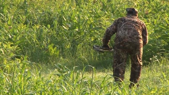 Bow Hunting For Roebuck In Hungary Preview Image