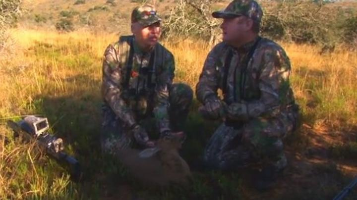 Duiker Air Rifle Hunting in South Africa Preview Image