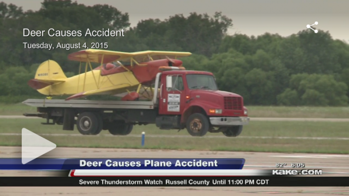 Deer Vs. ... Aircraft? Preview Image