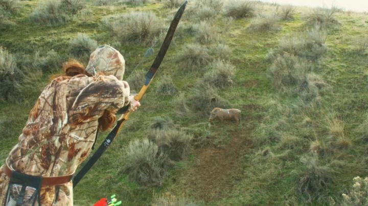 Want To Kill More Game With A Bow? Shoot More Foam. Preview Image